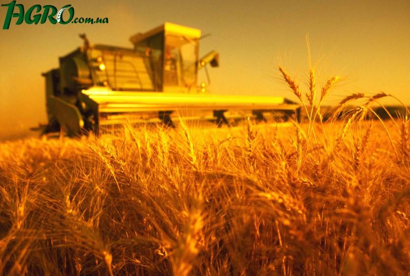 термобелья предлагают доля дохода сельхозпроизводителя в производстве хлеба для них
